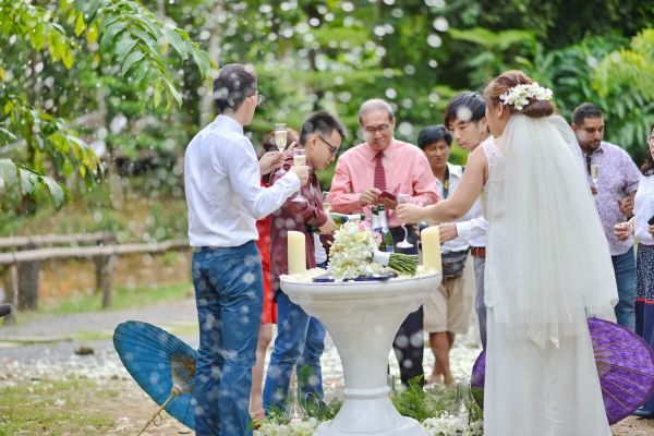 Phang Nga Elephant Wedding