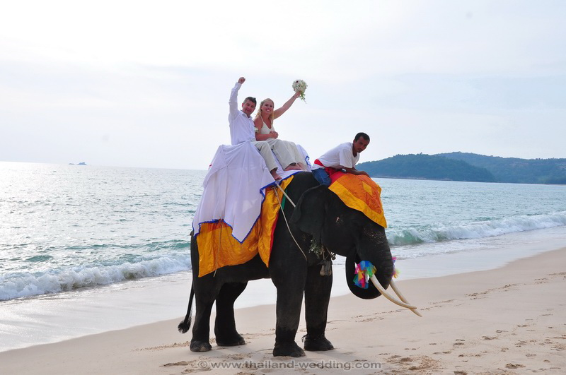 Phuket Elephant Wedding