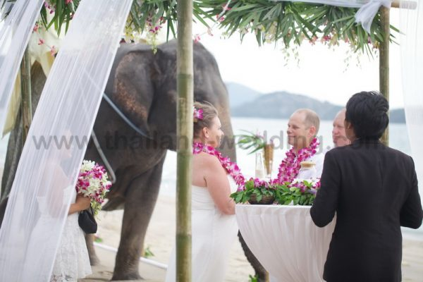 Elephant Wedding Ceremony
